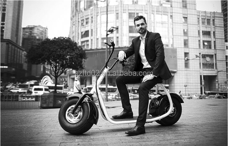 2016 Fat tyre moped 3 electro life battery electric bicycle
