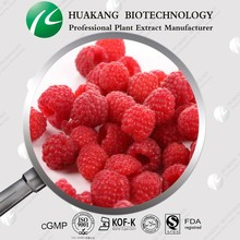 100% Natural Raspberry Extract 4% Raspberry Ketone
