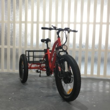mobility tricycle delivery 500W electric three wheel bicycle with fat tire
