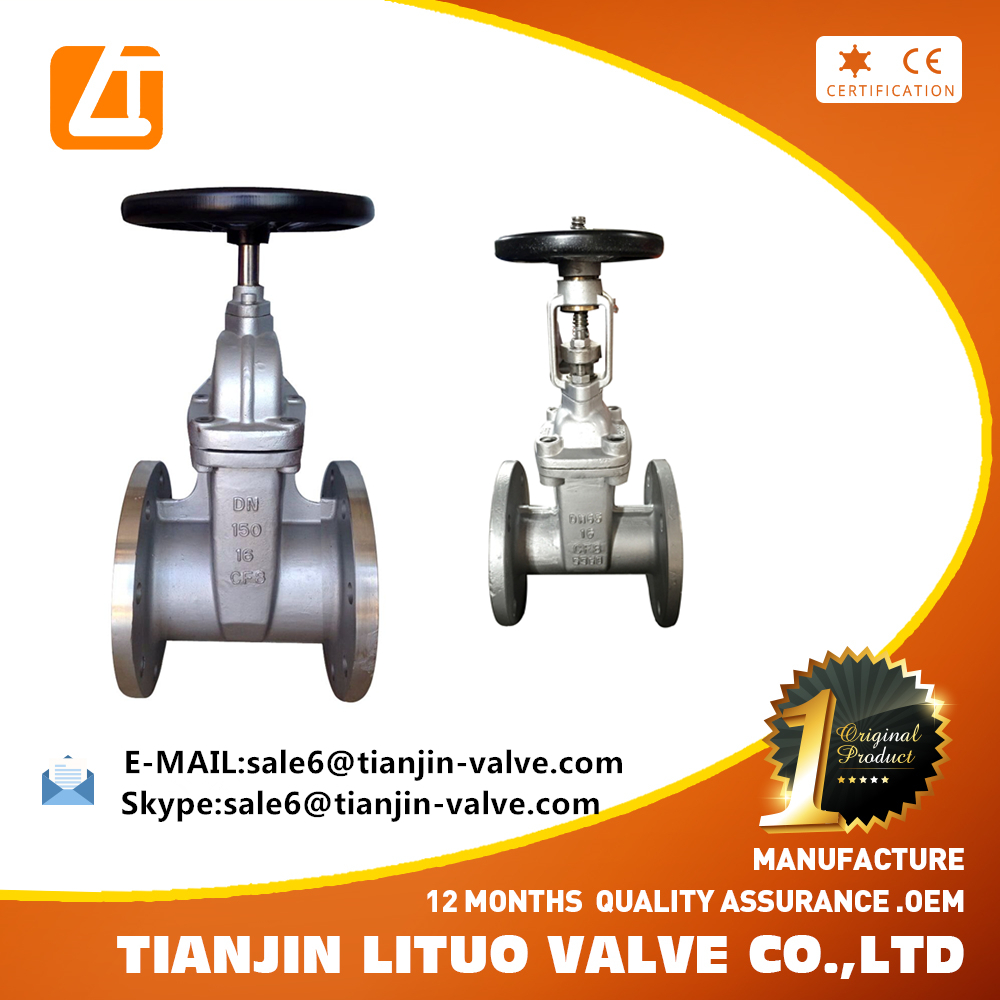 API Stainless Steel SS 304 316 Flanged End Gate Valve