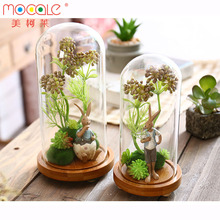 Creative Glass Dome Cover Animal Glass Cover Home Decoration