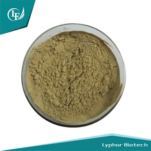 Factory Supply Pharmaceutical Grade Belladonna Herb Extract