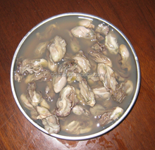 Supply best canned fresh oyster/favorable price oyster