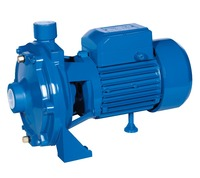 OEM brand wholesale 1HP electric SCM series centrifugal pump tiger water pump for irrigation
