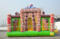 giant water slide inflatable slide for kids rent Z3038