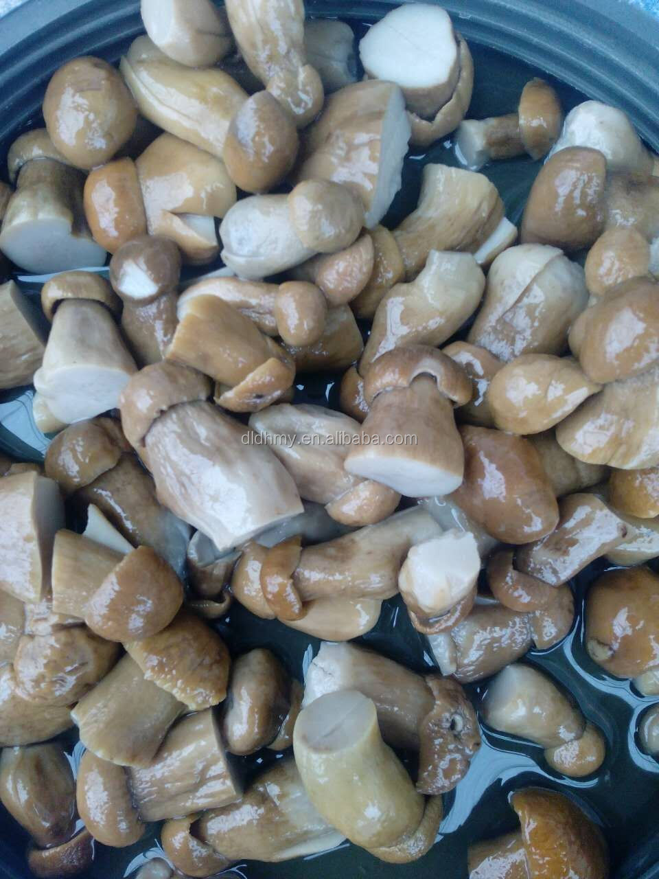 edible mushrooms types