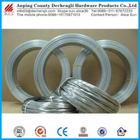 custom Spring wire /galvanized oval stainless steel wire /galvanized flat wire