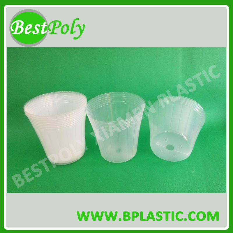 Clear Plastic Nursery Pot for Orchid
