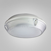 /product-detail/zhongshan-supplier-high-quality-round-shape-waterproof-led-ceiling-light-60764566515.html