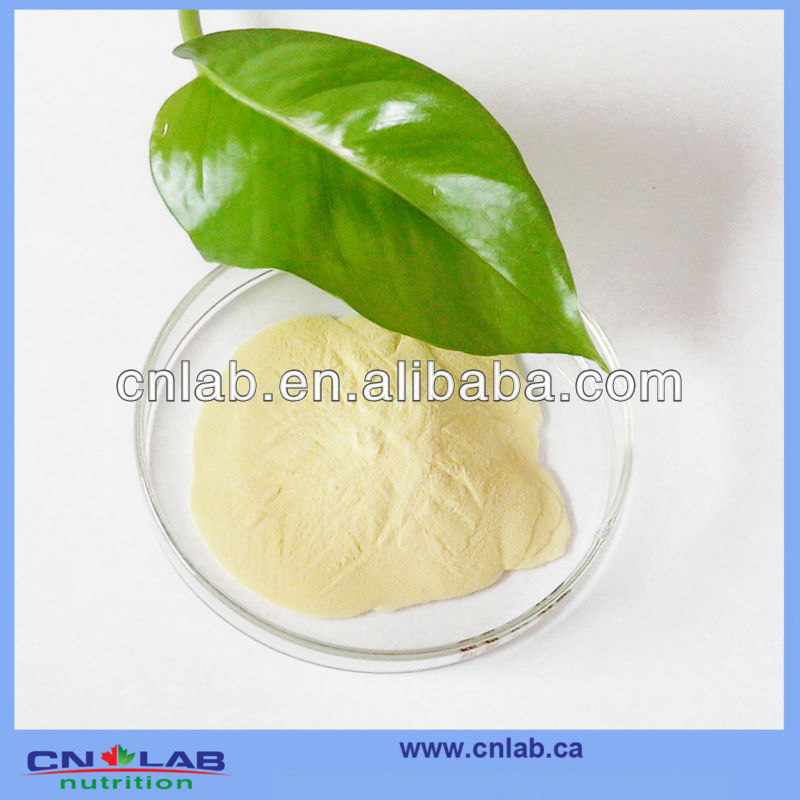 ISO9001/GMP Manufacturer Supply Natural Soybean Meal Extract in High Quality