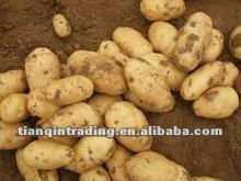 chinese potato 2012