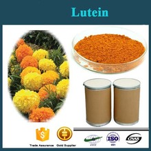 Marigold Extract Herbal Extract Lutein 95% Purity High Quality Lutein Powder