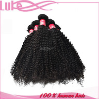 Top Quality Unprocessed 100% Brazilian Virgin Afro Kinky Twists Hair
