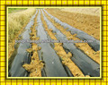 agricultural mulch film with black colour