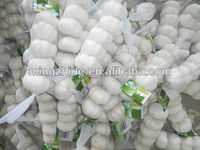 2013 crop natural garlic ,good quality new garlic
