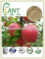 100%Natural apple peel extract powder