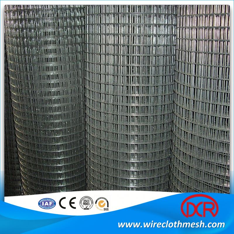 Plastic Coated Stainless Steel Welded Wire Mesh