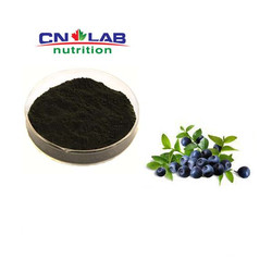 Factory supply high quality Bilberry Fruit Extract/Bilberry Plants for Sale