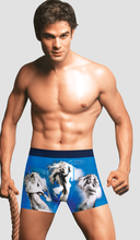 custom made mens underwear boxer shorts/ french mens underwear/mens underwear boxers