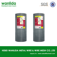 Low carbon steel 22 gauge welded wire mesh ( SGS )