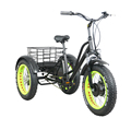 3 wheel electric bicycle for adults with 48V500W BAFANG motor