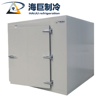 Hot sale  low cost cold room suppliers south africa for fruit and vegetable|cold room requirements from factory
