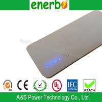 High capacity LED Power ROHS Power Bank with Charger Cable With Cheap Price