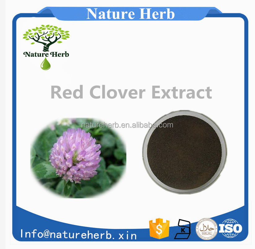 100% Natural Powder Red Clover Flower Extract 40% Isoflavones