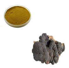 Most Powerful Anti-Cancer and Tumor Cells Inhibition Chaga Mushroom Extract Powder