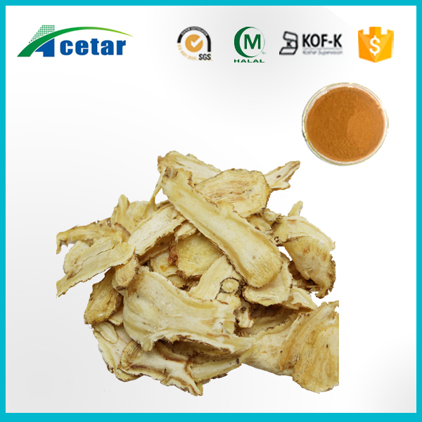 Real factory supply Female Ginseng- Chinese Angelica Extract 1% Ligustilide