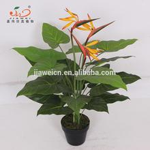 table artificial paradise birds plants indoor plastic flower bonsai from chinese factory