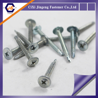 Ningbo galvanized modified truss philips head self drilling screws
