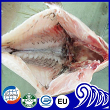 Seafood international Frozen Tilapia fish and fillet