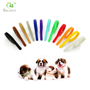 Trade assurance colorful puppy ID band, pet dog collar