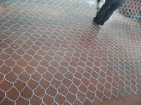 AnpinRock Filed Gabion Box, River gabion wall, Twisted Hexagonal Mesh