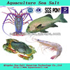 Pet Product Aquaculture Sea Salt Shrimp