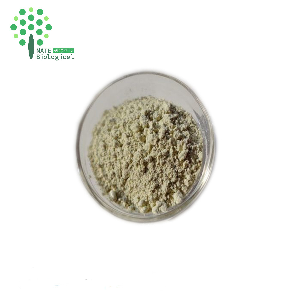 lowering blood pressure natural gynostemma pentaphyllum extract gynostemma pentaphylla extract powder