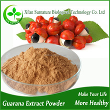 Factory supply guarana seed extract 22% caffeine paullinia cupana