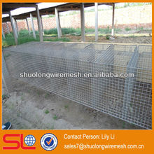 steel welded laboratory rat cages /cheap mouse cage