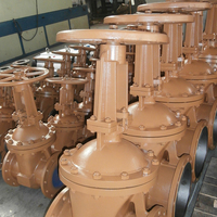 DN15-DN1200 Flanged Handle Non Rising Stem Gate Valve