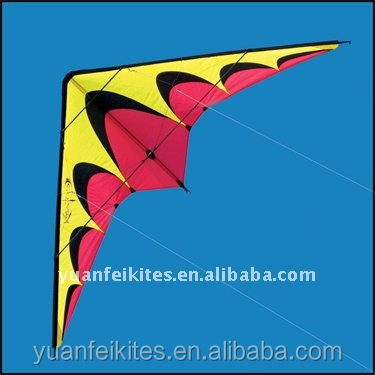 Promotional Surf Stunt Kite