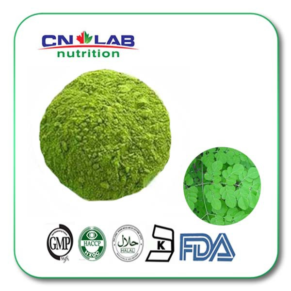 high quality dried moringa leaf extract/moringa oleifera leaf powder