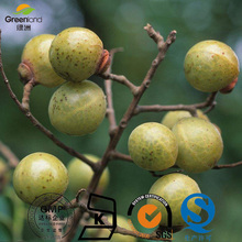 Greenland nature soapberry extract 60-90% Saponins