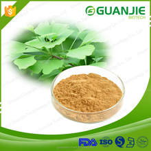 Factory Price 100% Natural Ginkgo Biloba Leaf Extract/Flavones 24% Terpene Lactones 6%