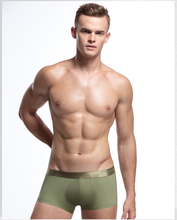 Ice silk men's sexy lovely young boys modeling underwear