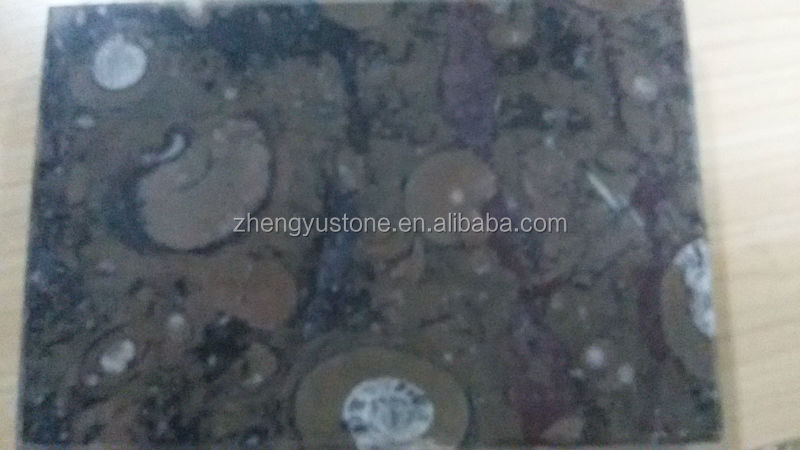 Brown Fossile Marble Slab
