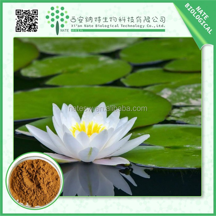 Wholesale products plant extract lotus leaf extract 2%