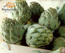 artichoke extract forskolin for drug and medicine