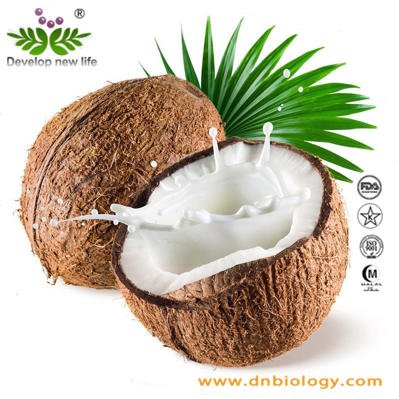 High quality Low Fat Desiccated Coconut Powder
