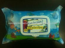 Wet Wipes Manufacturer and Exporter